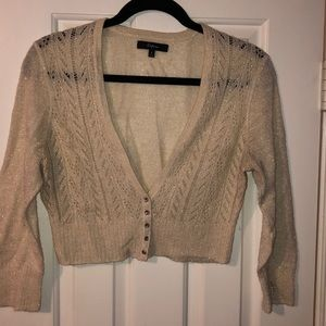 Shimmer gold Express shrug sweater